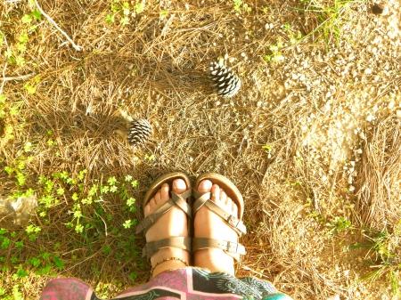 que os meus pés sejam as minhas raízes